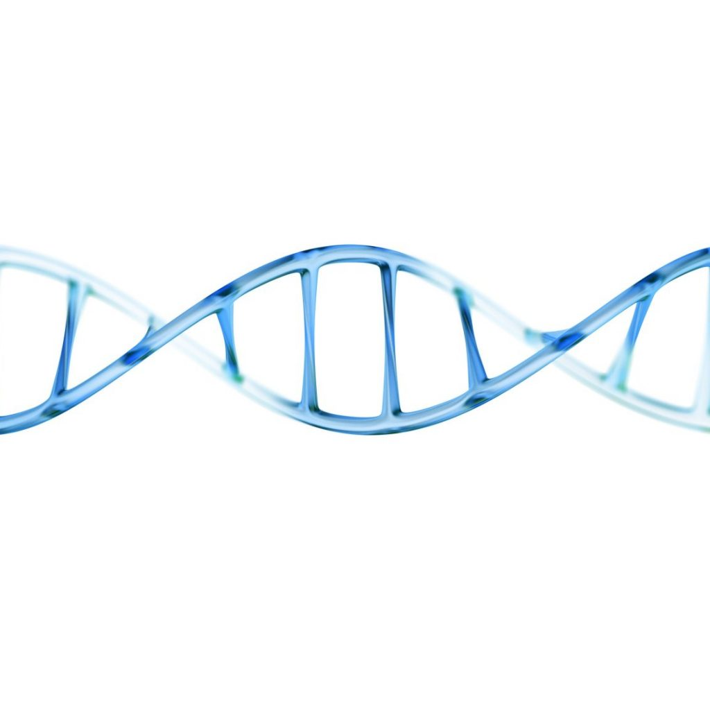 fragment of human DNA molecule, 3d illustration isolated on whit